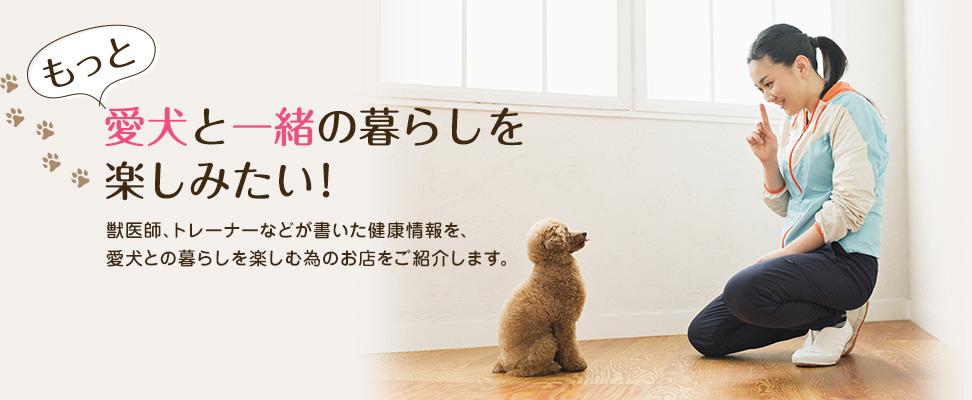 愛犬と一緒の暮らしを楽しみたい!